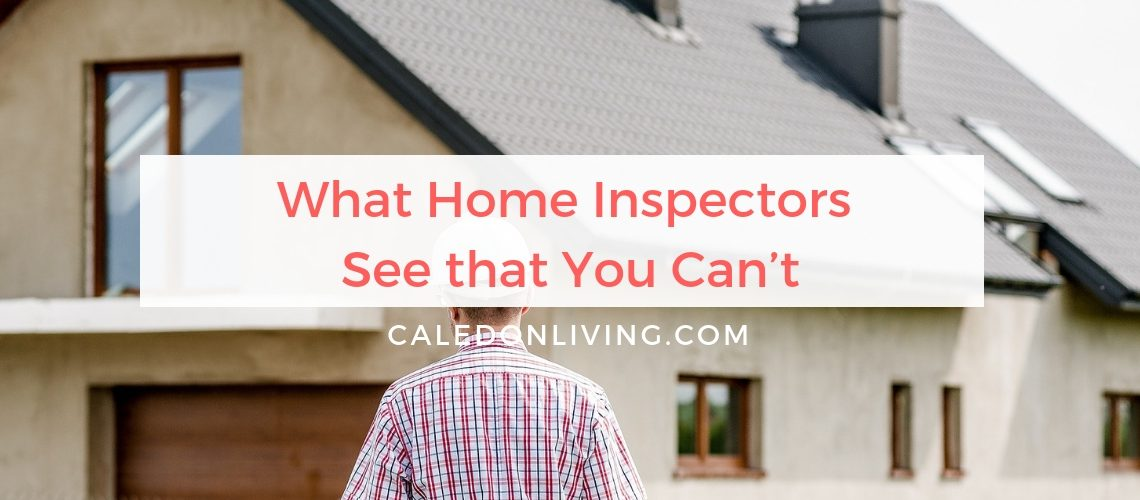 Real Estate Blog - Blog - What Home Inspectors See that You Can't